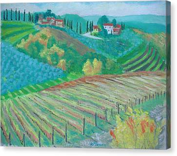 Tuscany Vineyards And Olive Groves Canvas Print by Robert P Hedden