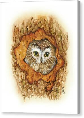 Twilight Owl Canvas Print by Donna Genovese