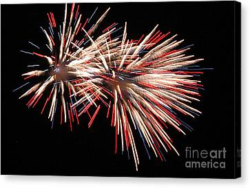 Twin Burst Canvas Print by Norman  Andrus