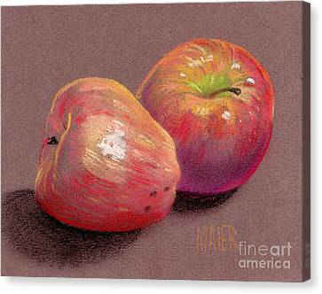 Two Apples Canvas Print by Donald Maier