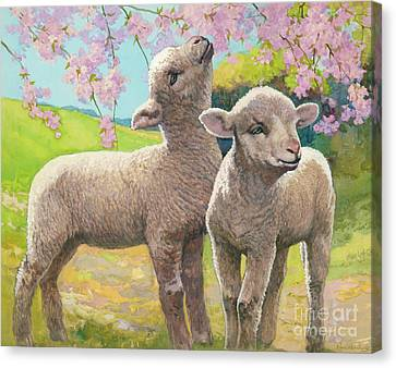 Two Lambs Eating Blossom Canvas Print by Van der Syde
