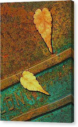 Two Leaves Or Not Two Leaves Canvas Print by Paul Wear