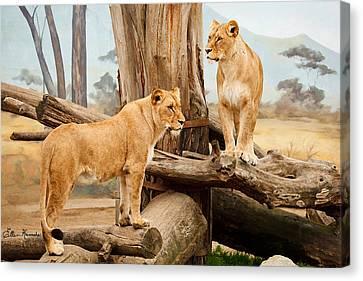 Two Lionesses Canvas Print by Ellen Henneke