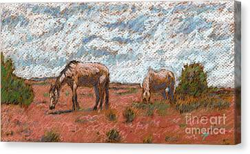 Two Mustangs Canvas Print by Suzie Majikol Maier