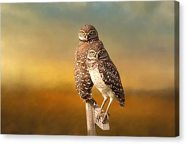 Two Of Us Canvas Print by Kim Hojnacki