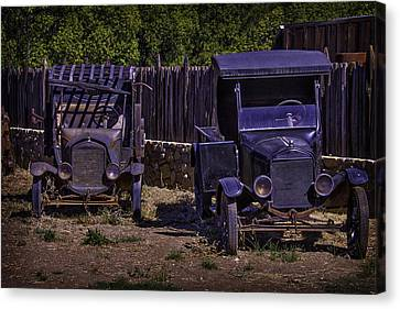 Two Old Friends Canvas Print by Garry Gay