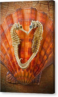 Two Seahorses On Seashell Canvas Print by Garry Gay