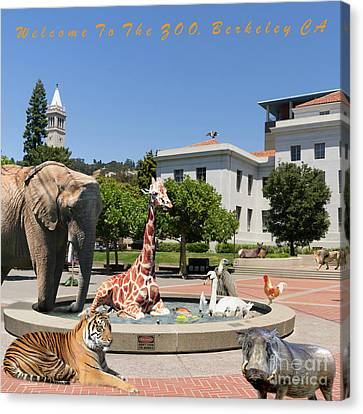 Uc Berkeley Welcomes You To The Zoo Please Do Not Feed The Animals Square And Text Canvas Print by Wingsdomain Art and Photography