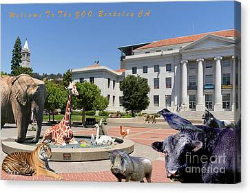 Uc Berkeley Welcomes You To The Zoo Please Do Not Feed The Animals With Text Canvas Print by Wingsdomain Art and Photography