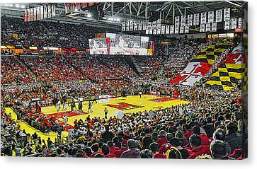 Umd Basketball Canvas Print by Christopher Kerby
