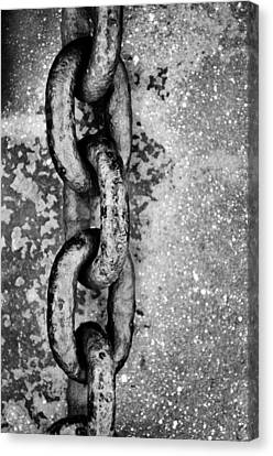 Unchained Canvas Print by Tom Druin