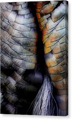 Uncle Tom's Gobbler N'all....  Canvas Print by Russell Styles