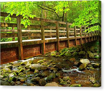 Under The Bridge Canvas Print by M Glisson