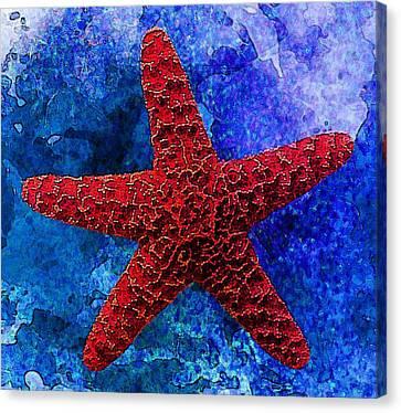Underwater. Starfish Canvas Print by Elena Kosvincheva