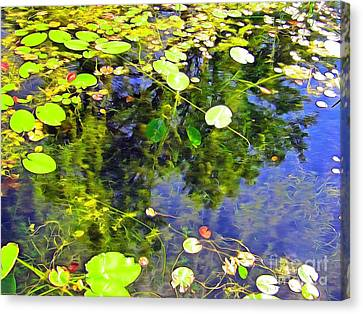 Undisclosed In Canada Canvas Print by Helene Guertin