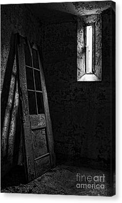 Unhinged Canvas Print by Andrew Paranavitana