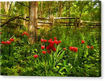Untamed Tulip Forest - Impressions Of Spring Canvas Print by Georgia Mizuleva