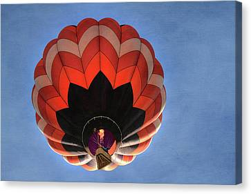 Up And Away In Reno Canvas Print by Donna Kennedy