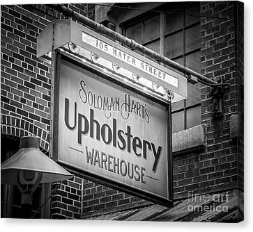 Upholstery Canvas Print by Perry Webster
