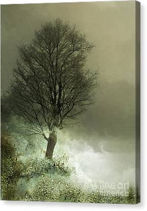 Upon The Windowsill Of Heaven Canvas Print by Jan Piller
