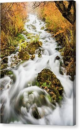 Upper Cascades At Cascade Springs Canvas Print by TL Mair