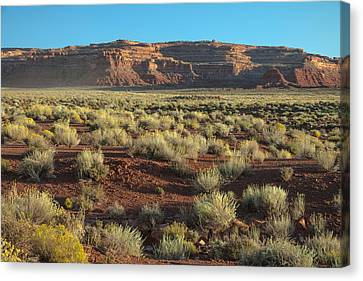 Valley Of The Gods Canvas Print by Joseph Smith