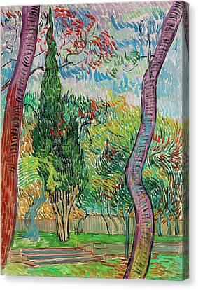Van Gogh Garden Of Saint Paul Hospital Canvas Print by Vincent Van Gogh