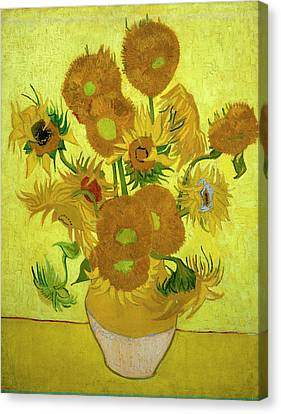 Van Gogh Sunflowers Canvas Print by Vincent Van Gogh