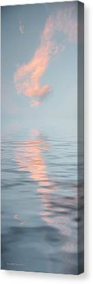 Vapor Canvas Print by Jerry McElroy