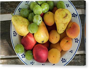 Variety Of Fresh Summer Fruit On A Plate Canvas Print by Sami Sarkis