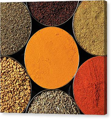 Various Kind Of Spices Canvas Print by PKG Photography