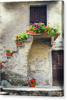 Vases With Flowers On Stairs Canvas Print by Silvia Ganora