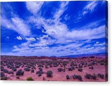 Vast Desert Sky Canvas Print by Garry Gay