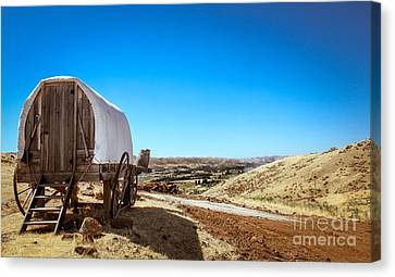 View From A Sheep Herder Wagon Canvas Print by Robert Bales