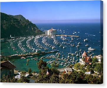 View Of Avalon Harbor Canvas Print by Cliff Wassmann