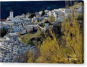View Of Capileira Village In The Alpujarras Mountains In Andalusia Canvas Print by Sami Sarkis