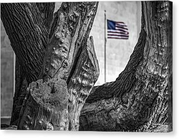 View To The Washington Monument Sc Canvas Print by Susan Candelario