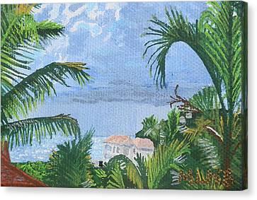 Villa In Guana Bay Canvas Print by Margaret Brooks