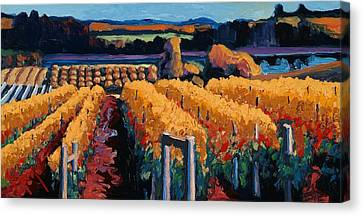 Vineyard Light Canvas Print by Christopher Mize