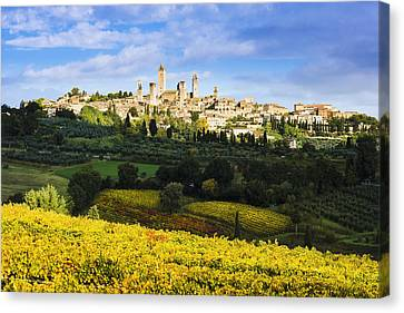 Vineyards And San Gimignano  Tuscany Canvas Print by Yves Marcoux