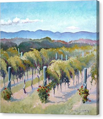 Vineyards, Mountains And Sky Canvas Print by Catherine Twomey
