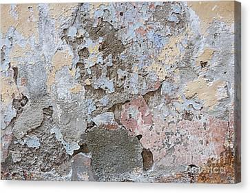 Vintage Abstract II Canvas Print by Elena Elisseeva
