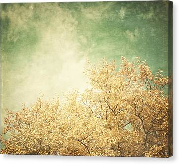 Vintage Autumn Canvas Print by Lisa Russo