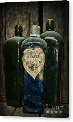 Vintage Case Gin Bottles Canvas Print by Paul Ward