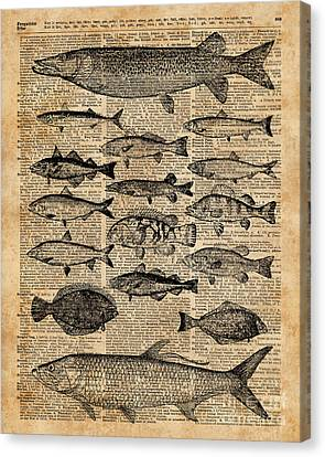 Vintage Illustration Of Fishes Over Old Book Page Dictionary Art Collage Canvas Print by Jacob Kuch