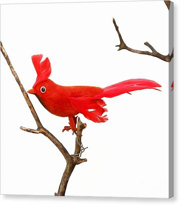Vintage Red Cardinal Canvas Print by Art Block Collections