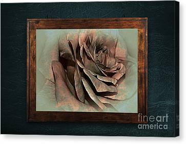 Vintage Rose On Old Wall 2 By Kaye Menner Canvas Print by Kaye Menner