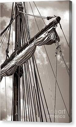 Vintage Tall Ship Rigging Canvas Print by Olivier Le Queinec