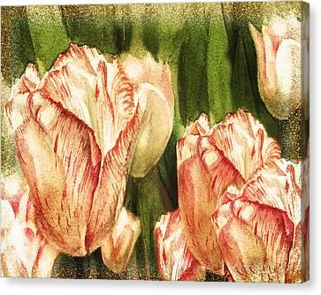 Vintage Tulips Watercolor Art Canvas Print by Irina Sztukowski
