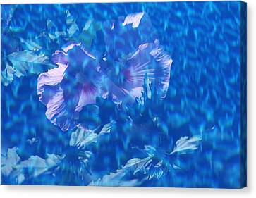 Violet Satin Reflections Canvas Print by Debbie Oppermann